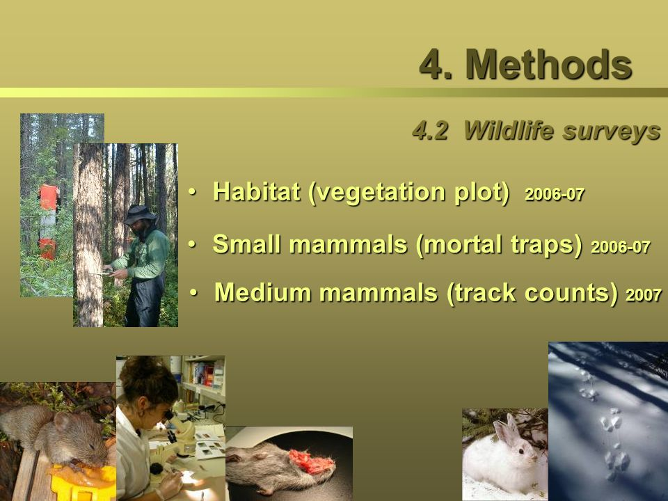 4. Methods 4.2 Wildlife surveys Habitat (vegetation plot) 2006-07Habitat (vegetation plot) 2006-07 Small mammals (mortal traps) 2006-07Small mammals (