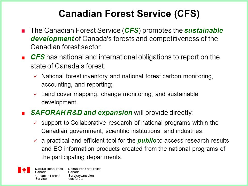 Natural Resources Canada Ressources naturelles Canada Canadian Forest Service Service canadien des forêts Canadian Forest Service (CFS) n The Canadian Forest Service (CFS) promotes the sustainable development of Canada s forests and competitiveness of the Canadian forest sector.