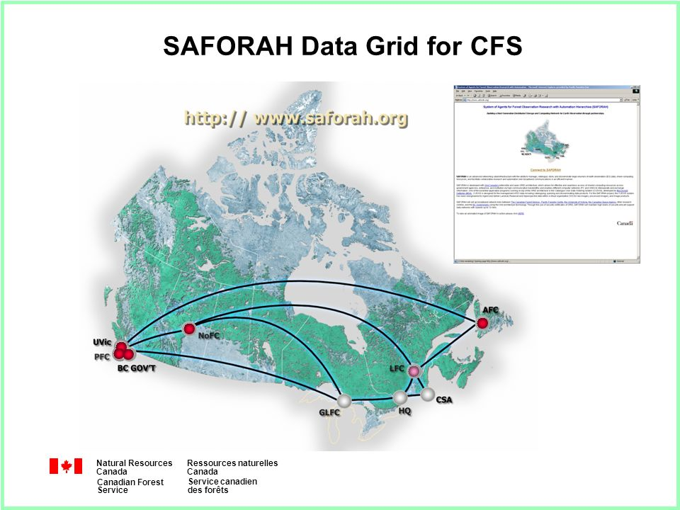 Natural Resources Canada Ressources naturelles Canada Canadian Forest Service Service canadien des forêts SAFORAH Data Grid for CFS