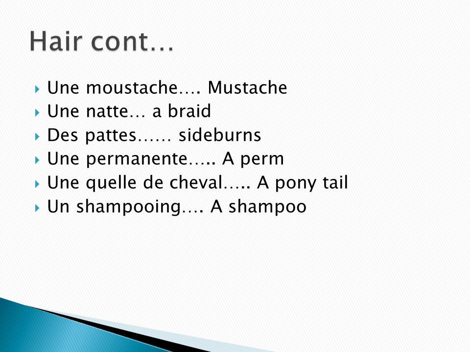 Une moustache…. Mustache Une natte… a braid Des pattes…… sideburns Une permanente….. A perm Une quelle de cheval….. A pony tail Un shampooing…. A sham