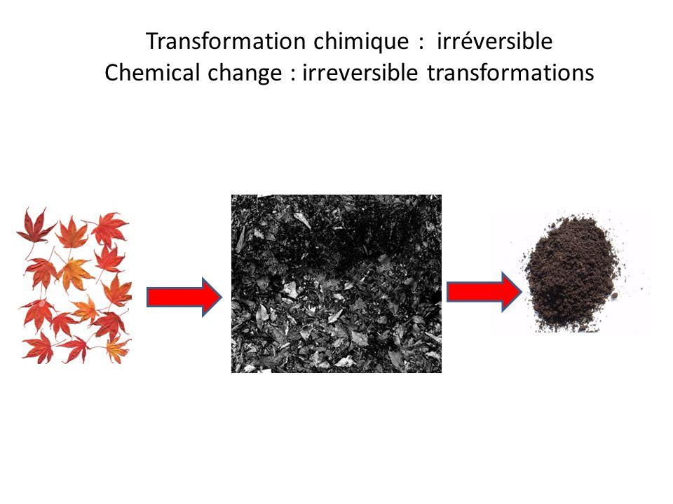 Transformation chimique : irréversible Chemical change : irreversible transformations