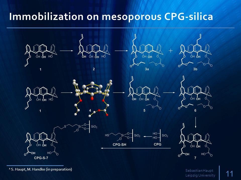 Immobilization on mesoporous CPG-silica 11 Sebastian Haupt Leipzig University 1 S.