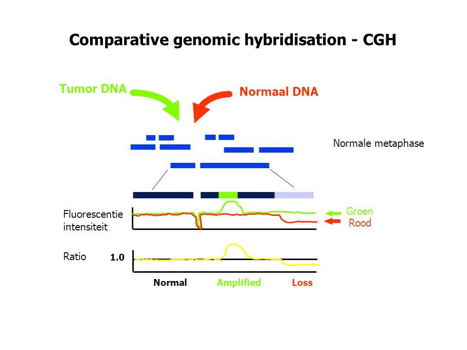 Comparative genomic hybridisation - CGH Tumor DNA Normaal DNA Fluorescentie intensiteit Ratio 1.0 Normal Amplified Loss Groen Rood Normale metaphase