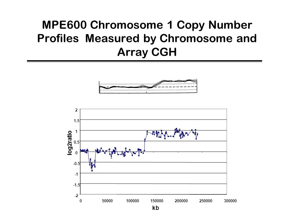 MPE600 Chromosome 1 Copy Number Profiles Measured by Chromosome and Array CGH -2 -1.5 -0.5 0 0.5 1 1.5 2 050000100000150000200000250000300000 kb log2r