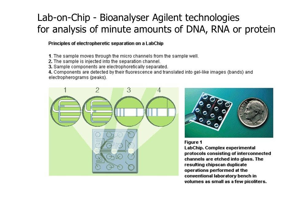 Lab-on-Chip - Bioanalyser Agilent technologies for analysis of minute amounts of DNA, RNA or protein