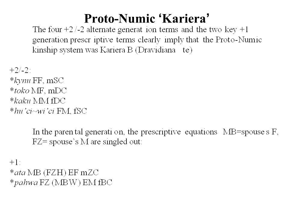Proto-Numic Kariera