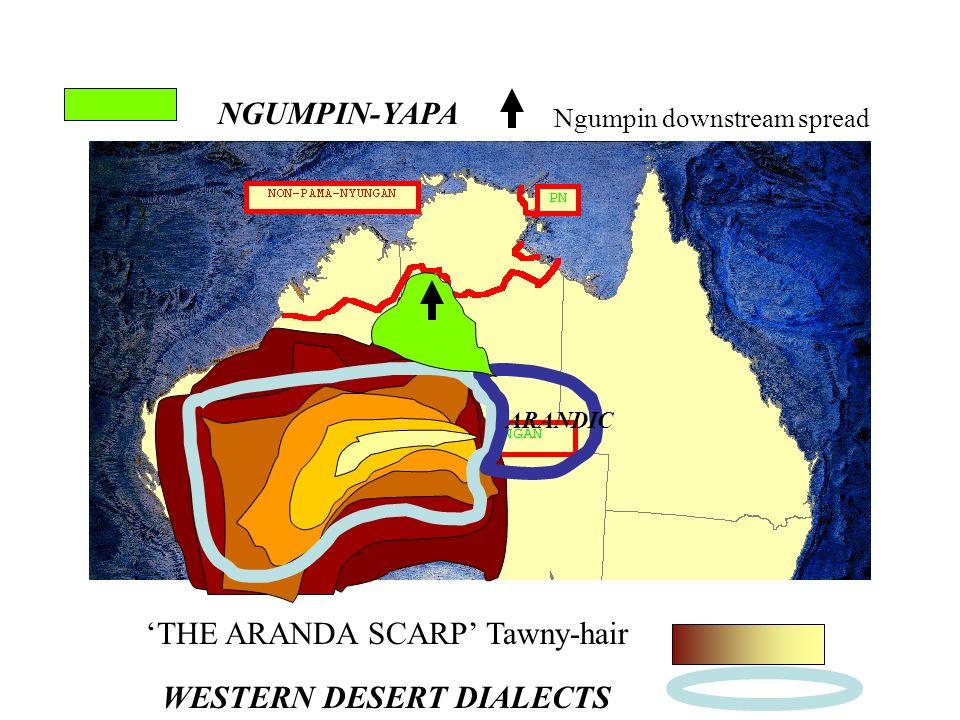 THE ARANDA SCARP Tawny-hair WESTERN DESERT DIALECTS ARANDIC NGUMPIN-YAPA Ngumpin downstream spread