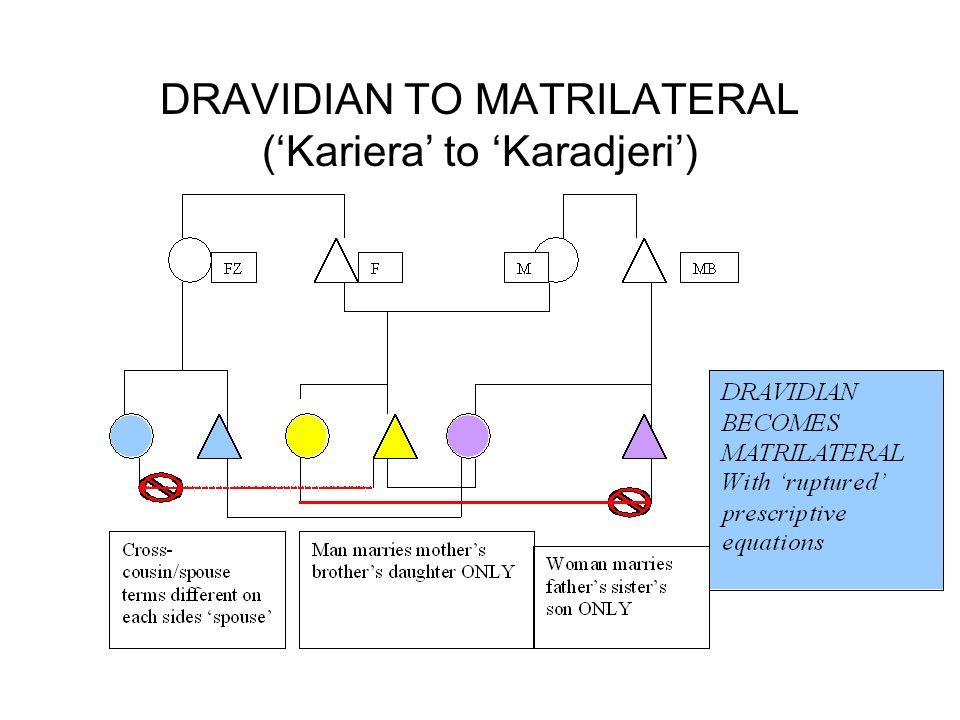 DRAVIDIAN TO MATRILATERAL (Kariera to Karadjeri)