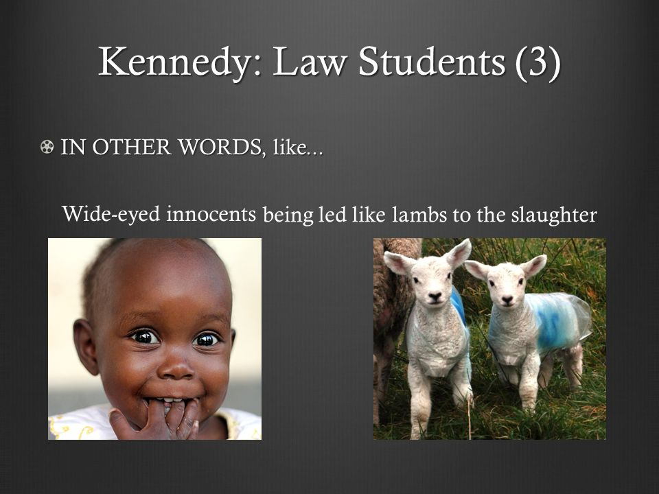 Kennedy: Law Students (3) being led likelambs to the slaughter Wide-eyed innocents IN OTHER WORDS, like...