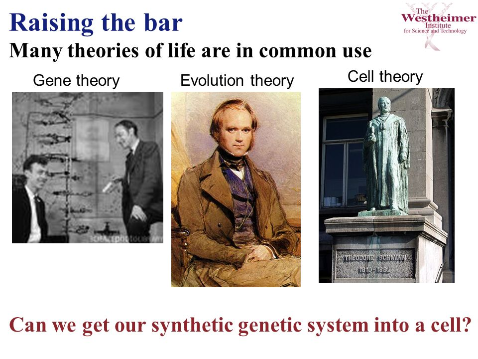 Raising the bar Many theories of life are in common use Gene theory Can we get our synthetic genetic system into a cell.