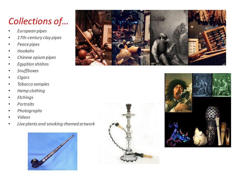 Collections of… European pipes 17th-century clay pipes Peace pipes Hookahs Chinese opium pipes Egyptian shishas Snuffboxes Cigars Tobacco samples Hemp clothing Etchings Portraits Photographs Videos Live plants and smoking-themed artwork