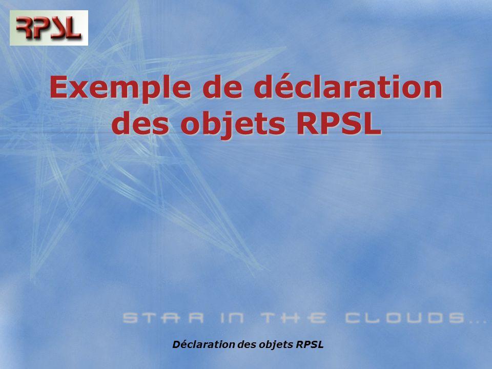 Déclaration des objets RPSL Exemple de déclaration des objets RPSL