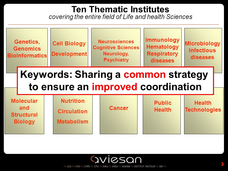 Ten Thematic Institutes covering the entire field of Life and health Sciences Neurosciences Cognitive Sciences Neurology, Psychiatry Genetics, Genomics Bioinformatics Immunology Hematology Respiratory diseases Microbiology Infectious diseases Public Health Technologies 3 Cancer Cell Biology Development Molecular and Structural Biology Nutrition Circulation Metabolism Keywords: Sharing a common strategy to ensure an improved coordination