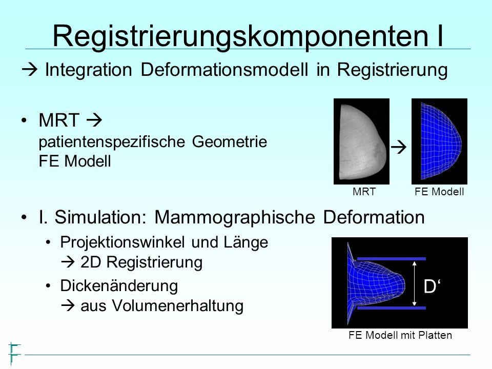 Integration Deformationsmodell in Registrierung MRT patientenspezifische Geometrie FE Modell I.