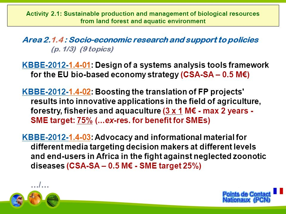 Area 2.1.4 : Socio-economic research and support to policies (p.