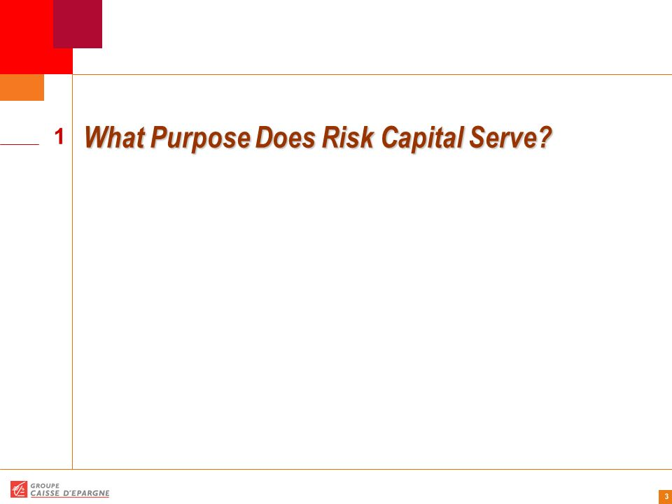 4 Risk capital is the cushion that provides protection against the various risks inherent in a corporations business, so that the firm can maintain its financial integrity and remain a going concern even in the event of a near catastrophic worst case scenario.