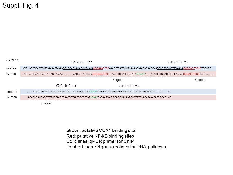Suppl. Fig. 4 human mouse -200 ACCTCACTCGTTAAAAATTAAAAGGAGCACAAGAGGGG-AGAGGGAAATTCC--AAGTTCATGGGTCACAATAAACACAAGCAATGCCCTCG-GTTT---ACAGGGGACTTCCCTCGGG