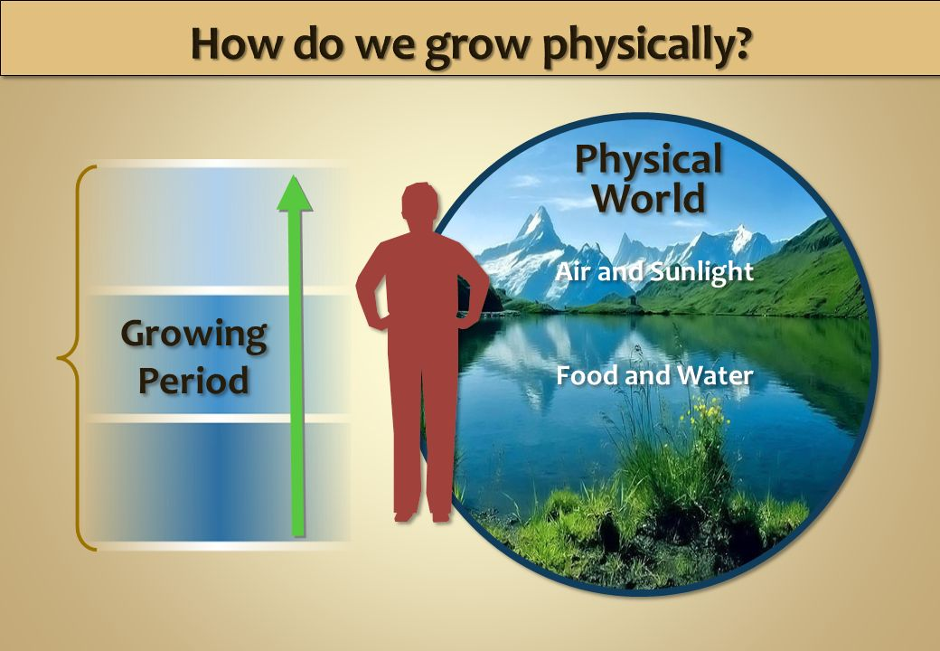 Physical World Physical World Air and Sunlight Food and Water Air and Sunlight Food and Water Growing Period Growing Period