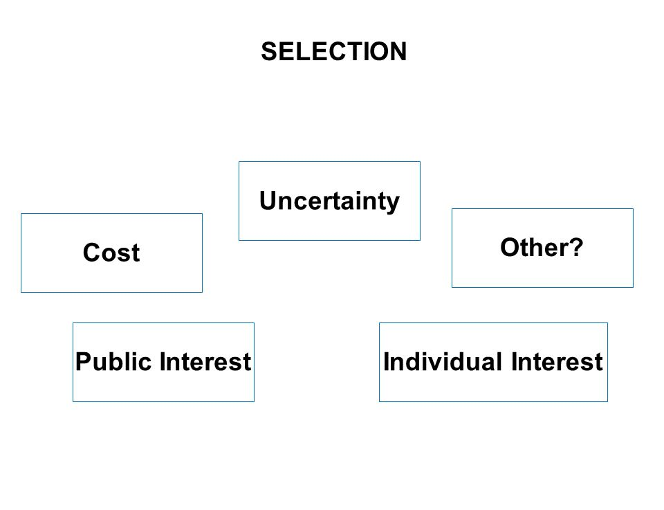 5 SEITE Uncertainty Individual InterestPublic Interest SELECTION Other Cost