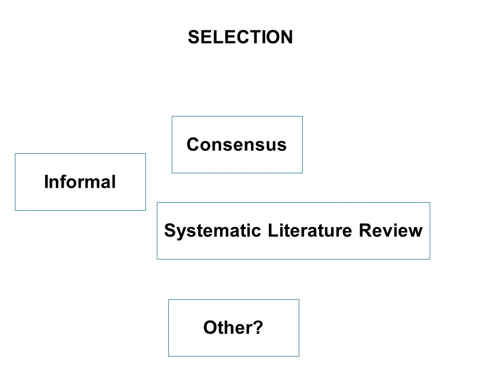 6 SEITE Consensus SELECTION Systematic Literature Review Informal Other?