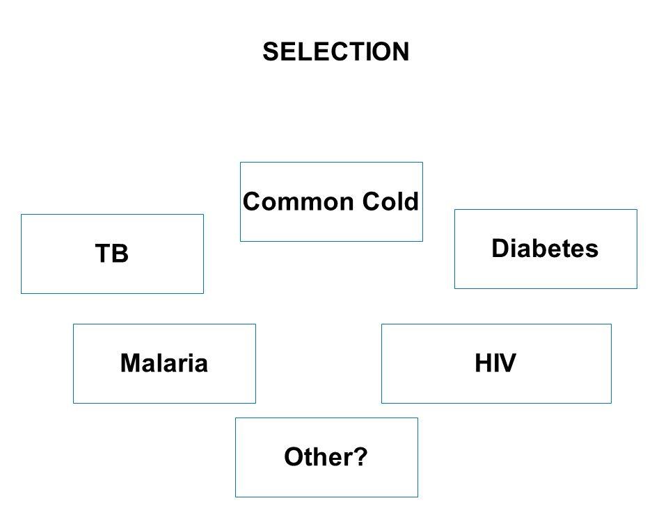 7 SEITE Common Cold HIVMalaria SELECTION Diabetes TB Other?