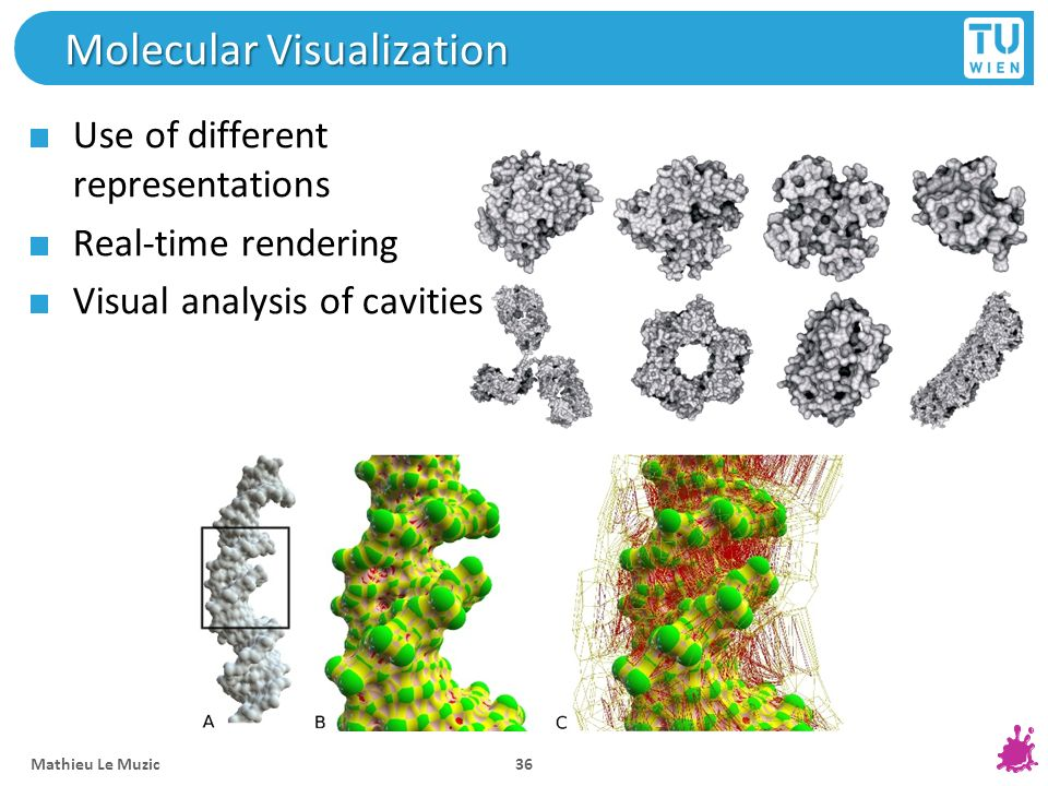 Molecular Visualization Use of different representations Real-time rendering Visual analysis of cavities Mathieu Le Muzic 36