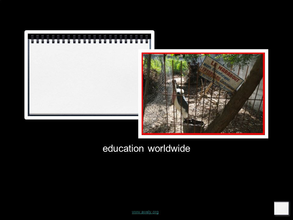www.awely.org education worldwide
