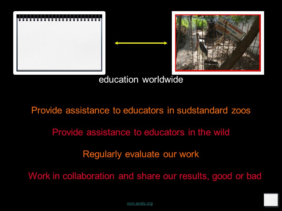 www.awely.org education worldwide Provide assistance to educators in sudstandard zoos Provide assistance to educators in the wild Regularly evaluate our work Work in collaboration and share our results, good or bad
