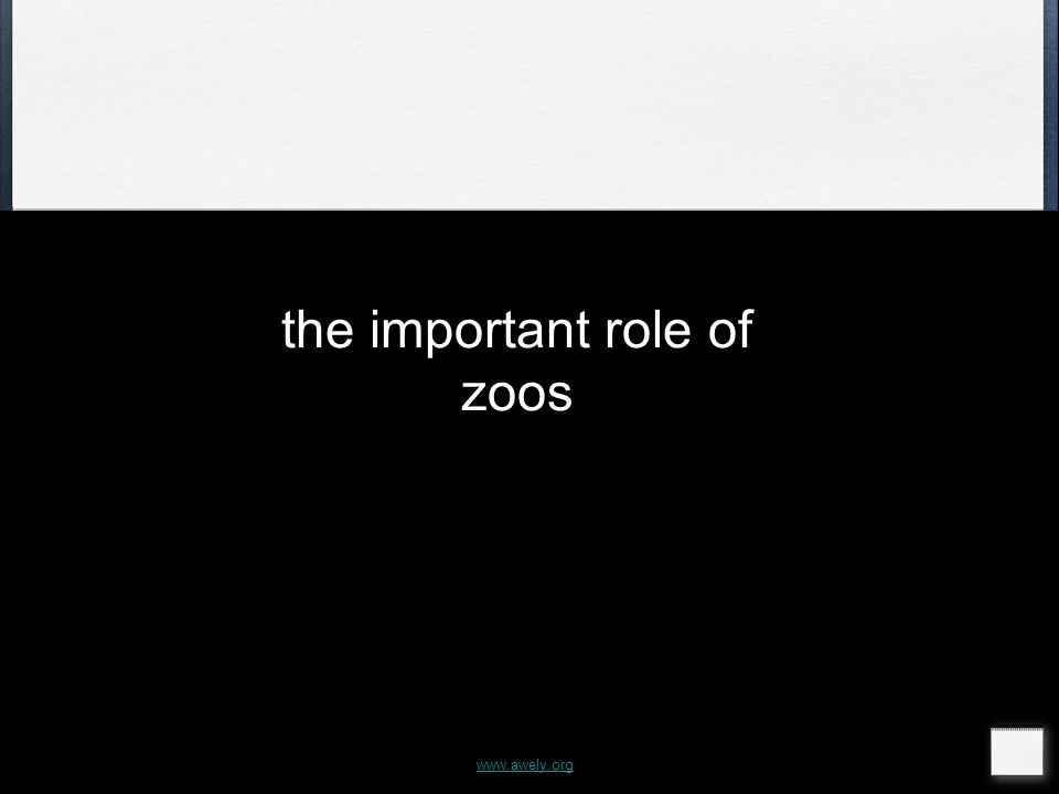 the important role of zoos www.awely.org