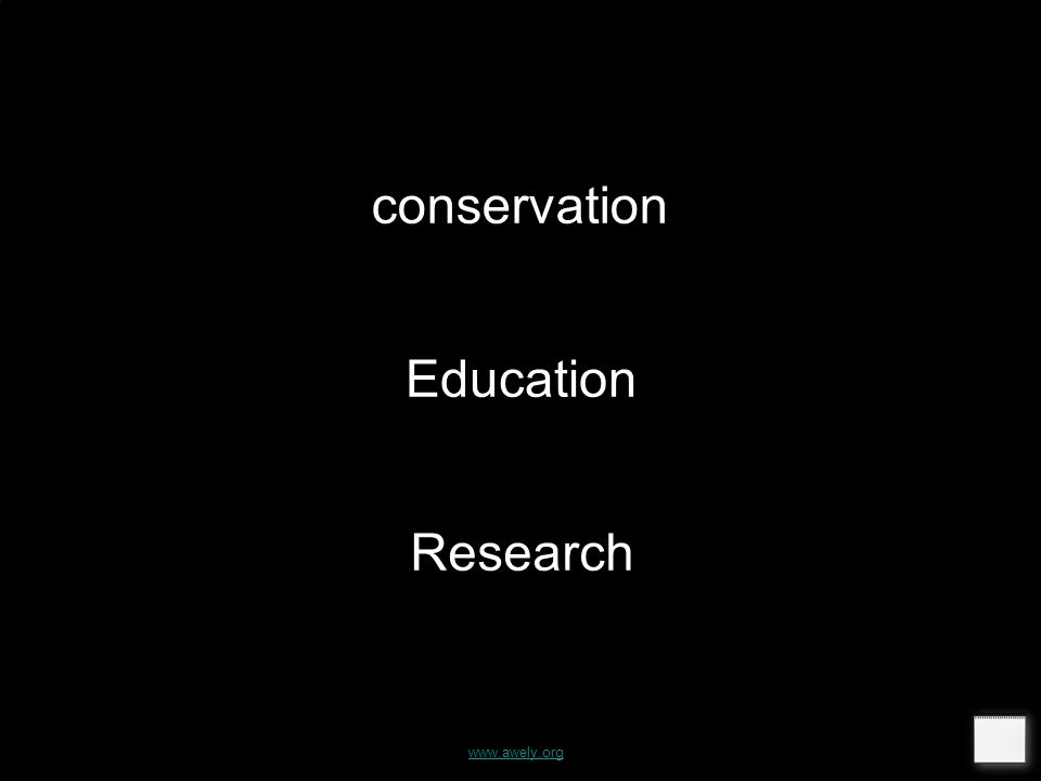 conservation Education Research www.awely.org
