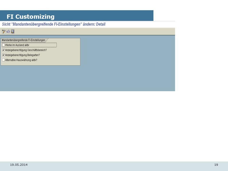 19.05.201419 FI Customizing