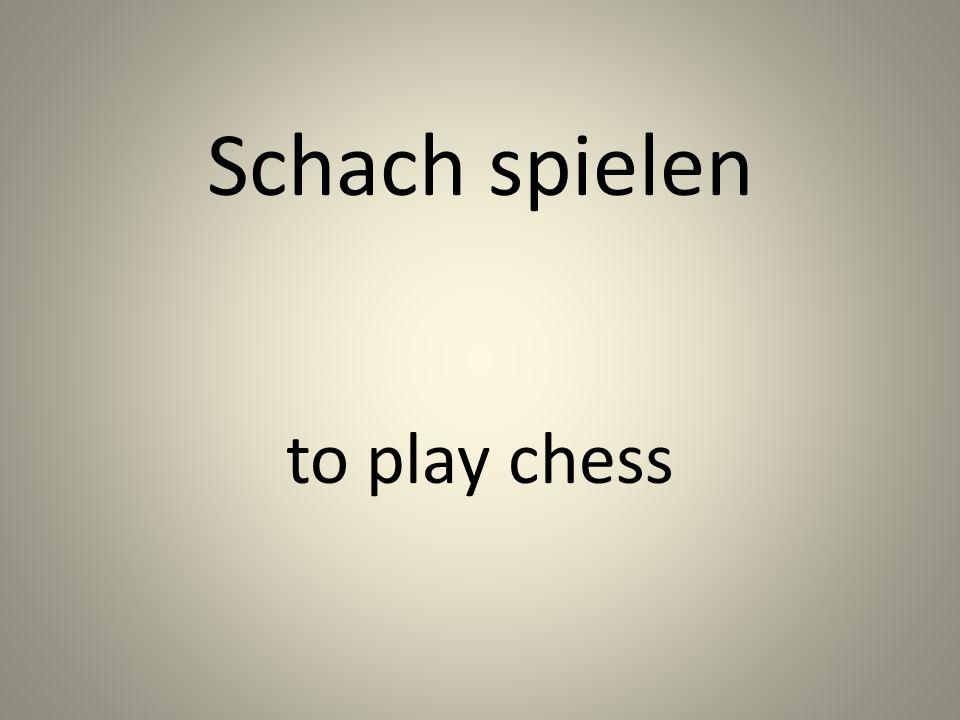 Schach spielen to play chess