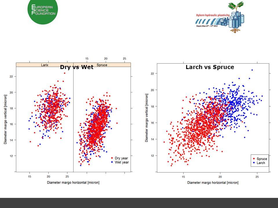 Larch vs SpruceDry vs Wet
