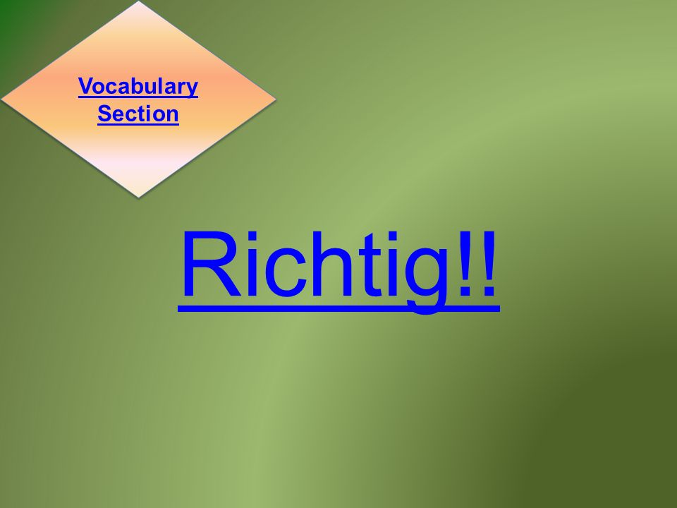Richtig!! Vocabulary Section Vocabulary Section