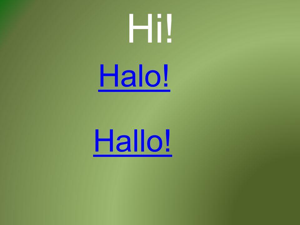 Hi! Halo! Hallo!