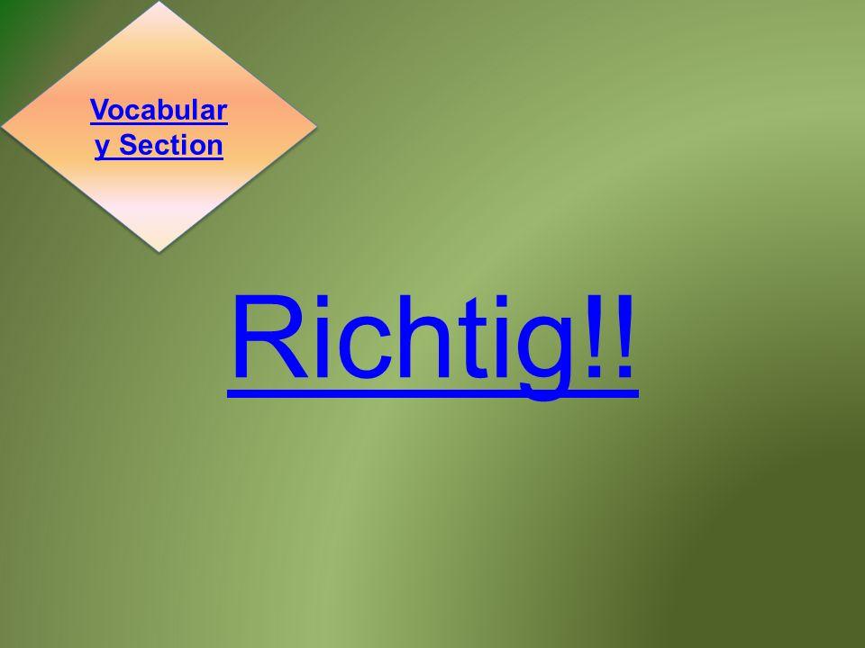 Richtig!! Vocabular y Section Vocabular y Section