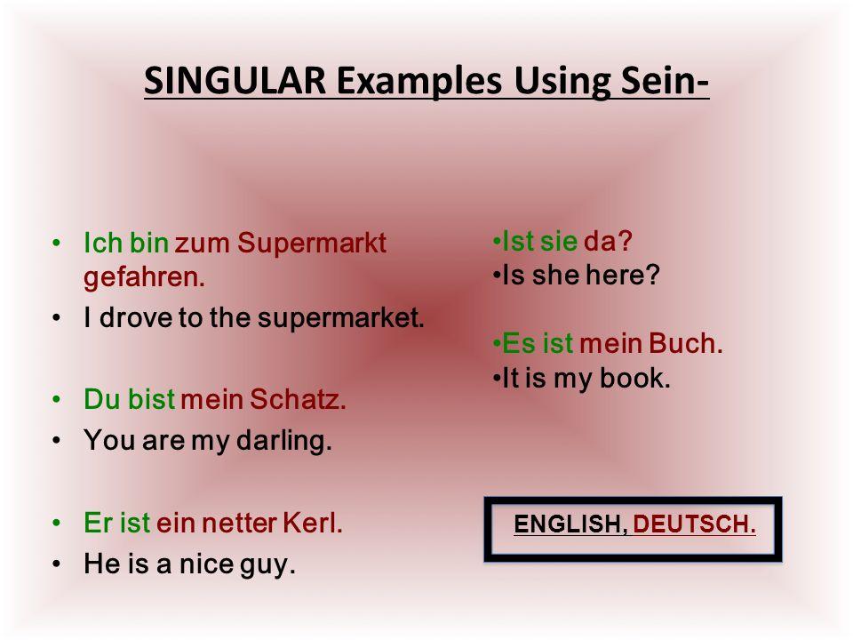 SINGULAR Examples Using Sein- Ich bin zum Supermarkt gefahren.