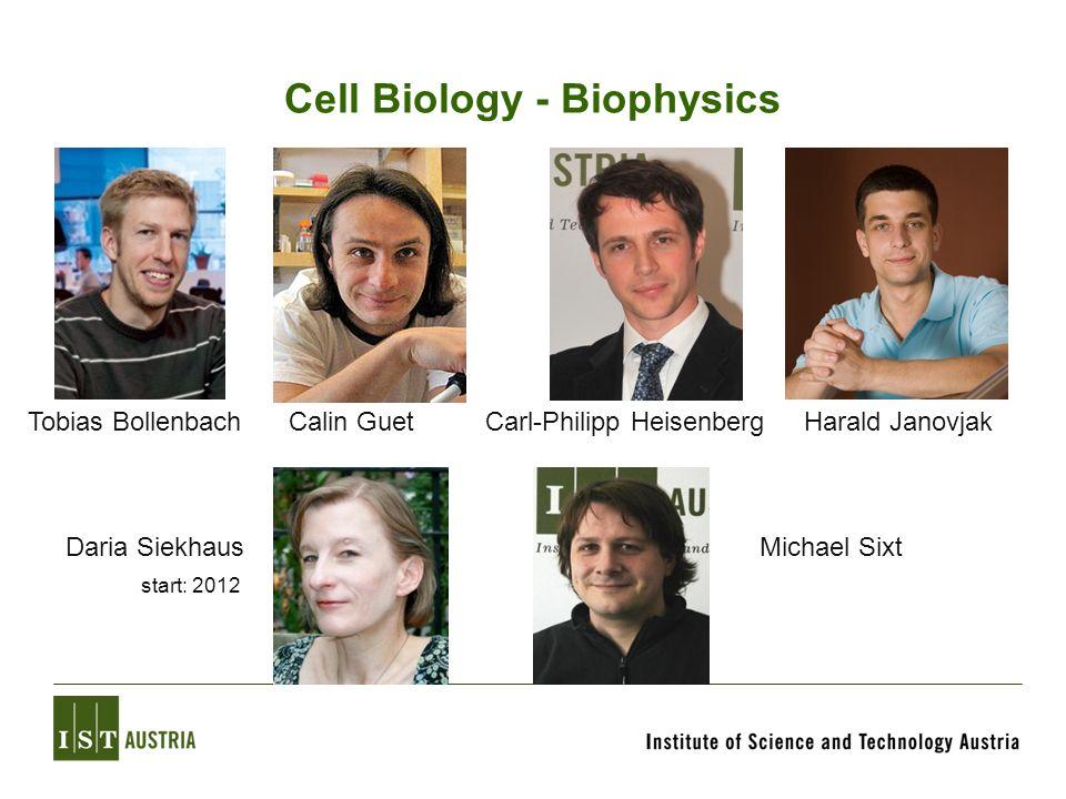 Cell Biology - Biophysics Tobias BollenbachCalin Guet Michael Sixt Carl-Philipp HeisenbergHarald Janovjak Daria Siekhaus start: 2012