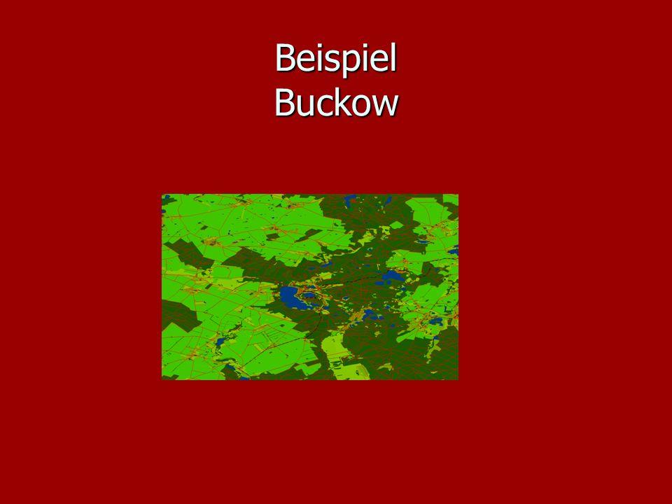 Beispiel Buckow