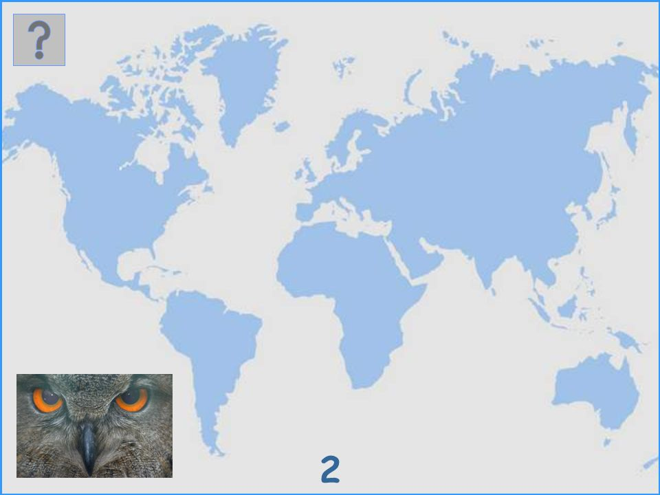 Where do these birds live? We present 25 different bird species in form of a picture. Click at their natural habitat on the map and you will get to th