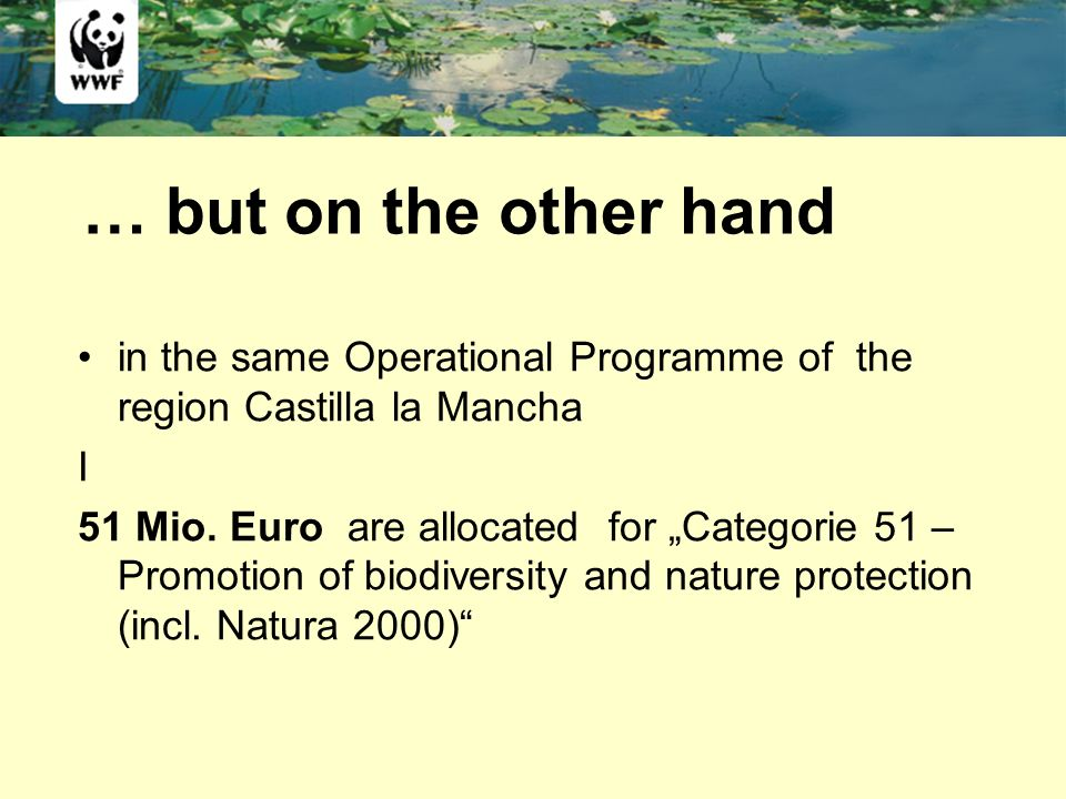 … but on the other hand in the same Operational Programme of the region Castilla la Mancha I 51 Mio. Euro are allocated for Categorie 51 – Promotion o