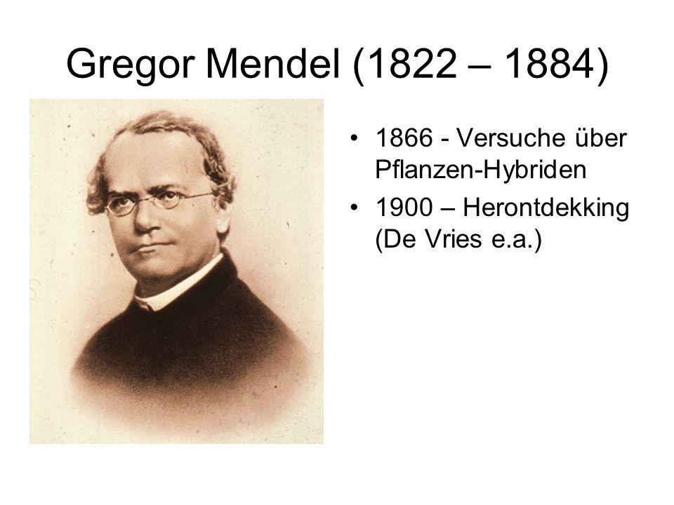 Gregor Mendel (1822 – 1884) 1866 - Versuche über Pflanzen-Hybriden 1900 – Herontdekking (De Vries e.a.)