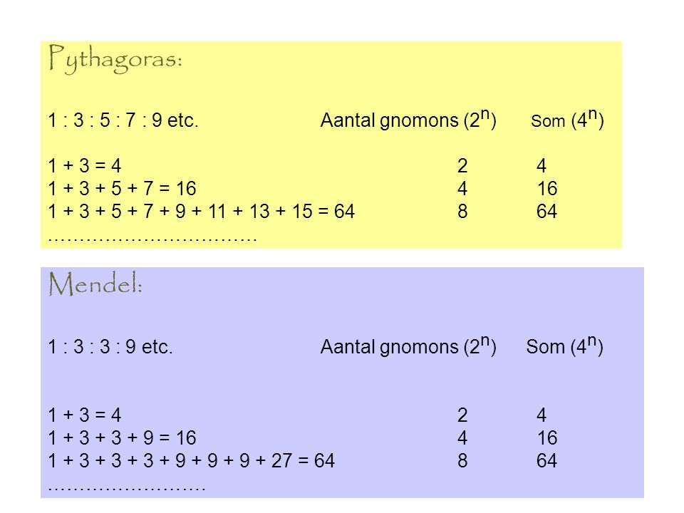 Pythagoras: 1 : 3 : 5 : 7 : 9 etc.Aantal gnomons (2 n ) Som (4 n ) 1 + 3 = 42 4 1 + 3 + 5 + 7 = 164 16 1 + 3 + 5 + 7 + 9 + 11 + 13 + 15 = 64 8 64 …………
