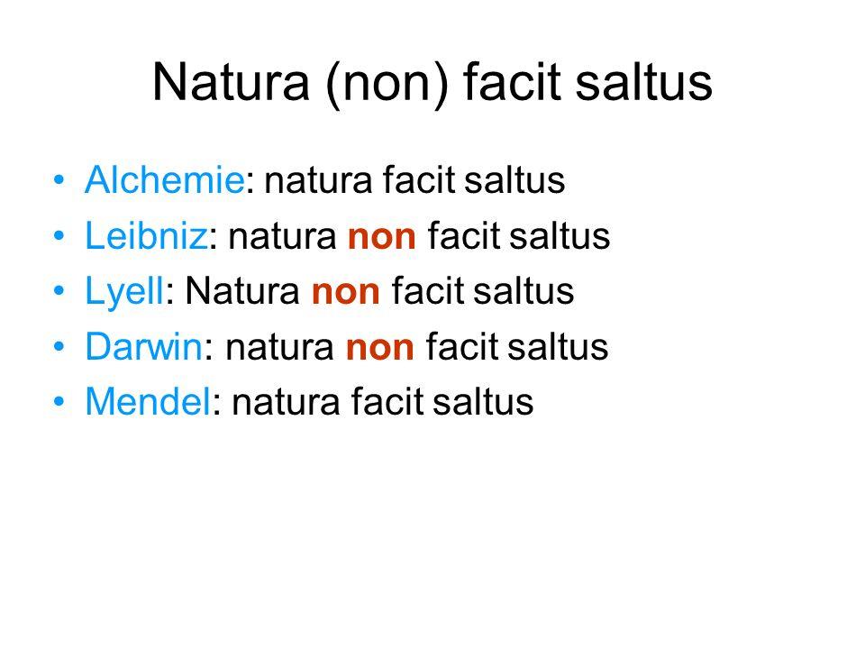 Natura (non) facit saltus Alchemie: natura facit saltus Leibniz: natura non facit saltus Lyell: Natura non facit saltus Darwin: natura non facit saltu