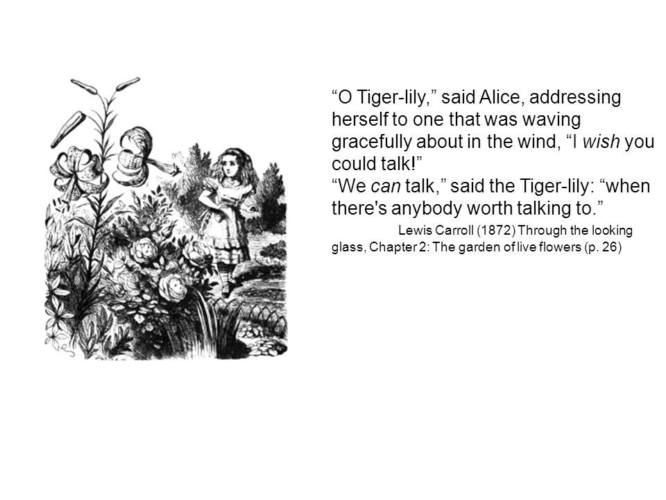 O Tiger-lily, said Alice, addressing herself to one that was waving gracefully about in the wind, I wish you could talk.