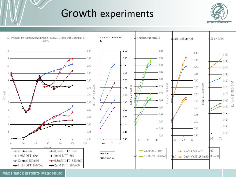 Max Planck Institute Magdeburg Growth experiments
