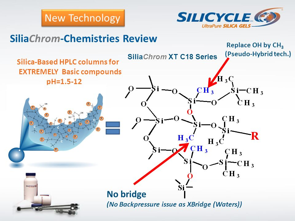SiliaChrom-Chemistries Review Silica-Based HPLC columns for EXTREMELY Basic compounds pH=1.5-12 SiliaChrom XT C18 Series Replace OH by CH 3 (Pseudo-Hy
