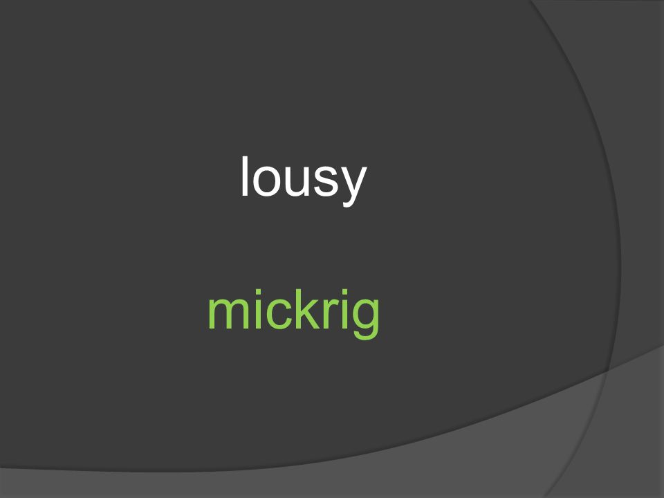 lousy mickrig