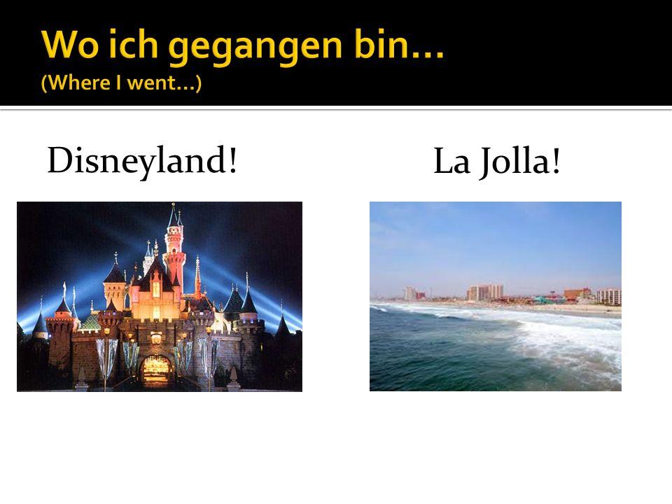 Disneyland! La Jolla!