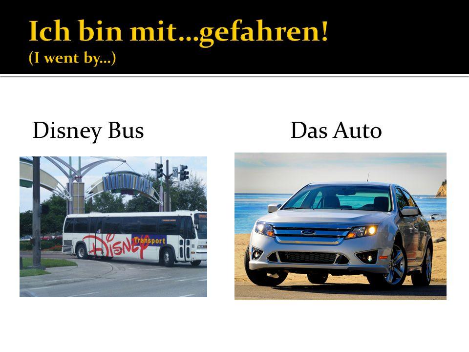 Disney BusDas Auto
